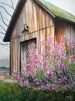 Little Spring Barn_18x24.jpg