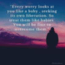 Every worry looks like a baby, seeking i