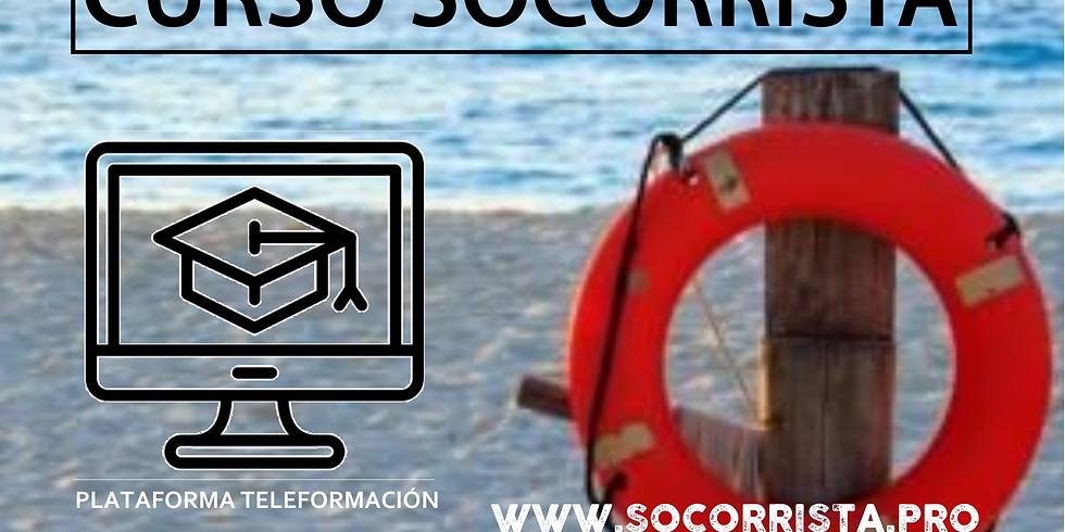 Curso Socorrista RFESS Semipresencial #Teleformación