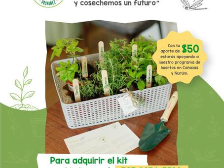 """Kit """" Mi Huertos solidarios"""" 2da edición"""