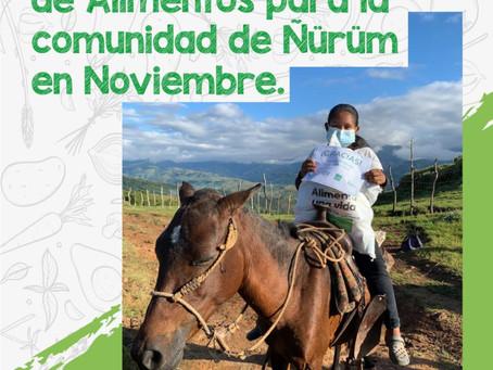 Entrega de Bolsas de Alimentos en la comunidad de Ñürüm.