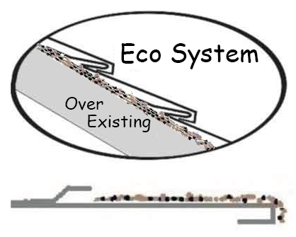 Header-EcoSystem
