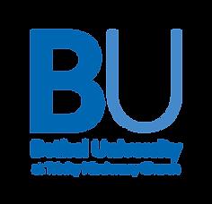 BUx-External Church Logo Option #3_Templ