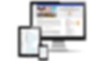 Cyber Civics Online.png
