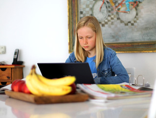 Challenges and Solutions for Schools in Navigating the Digital World
