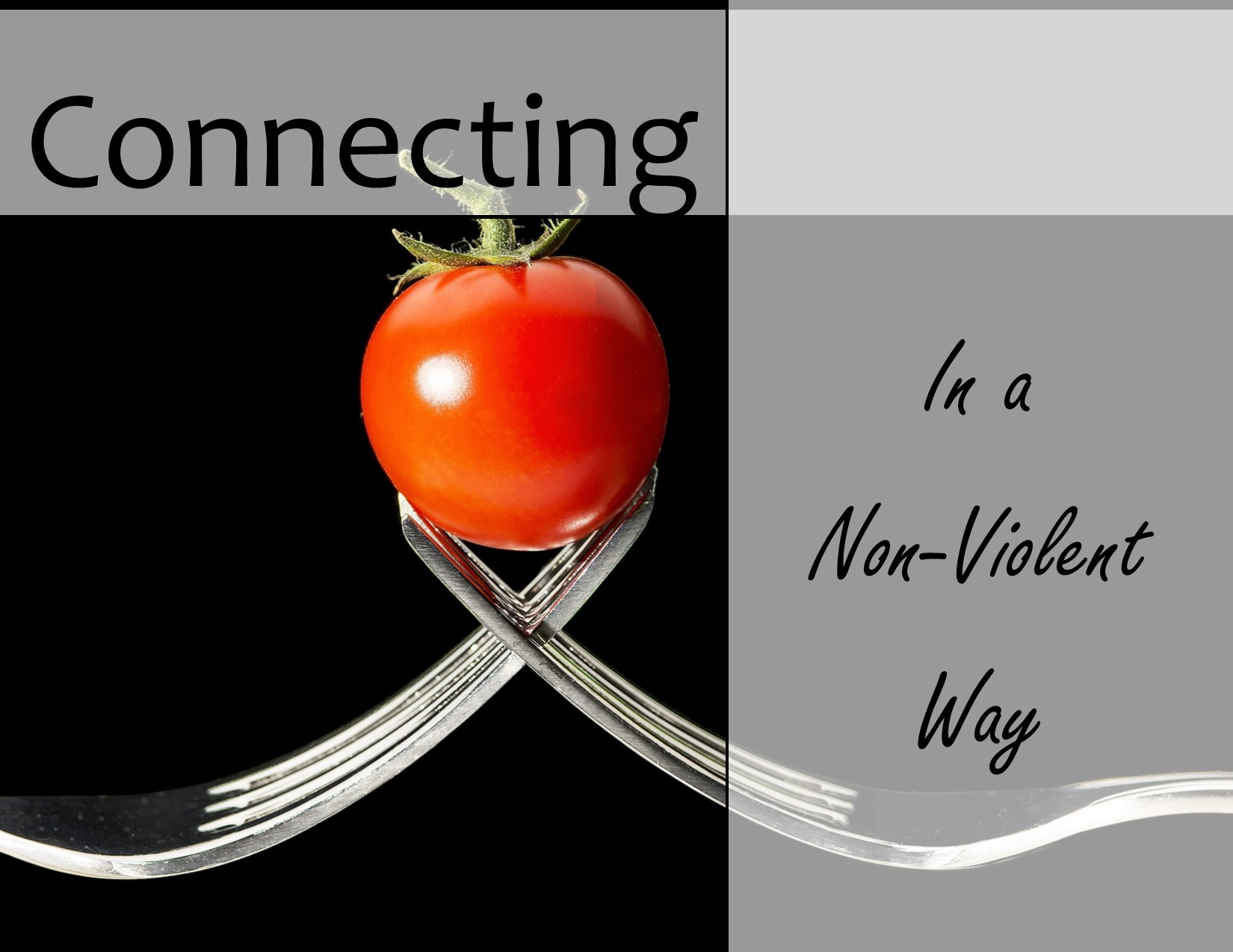 Connecting NonViolent