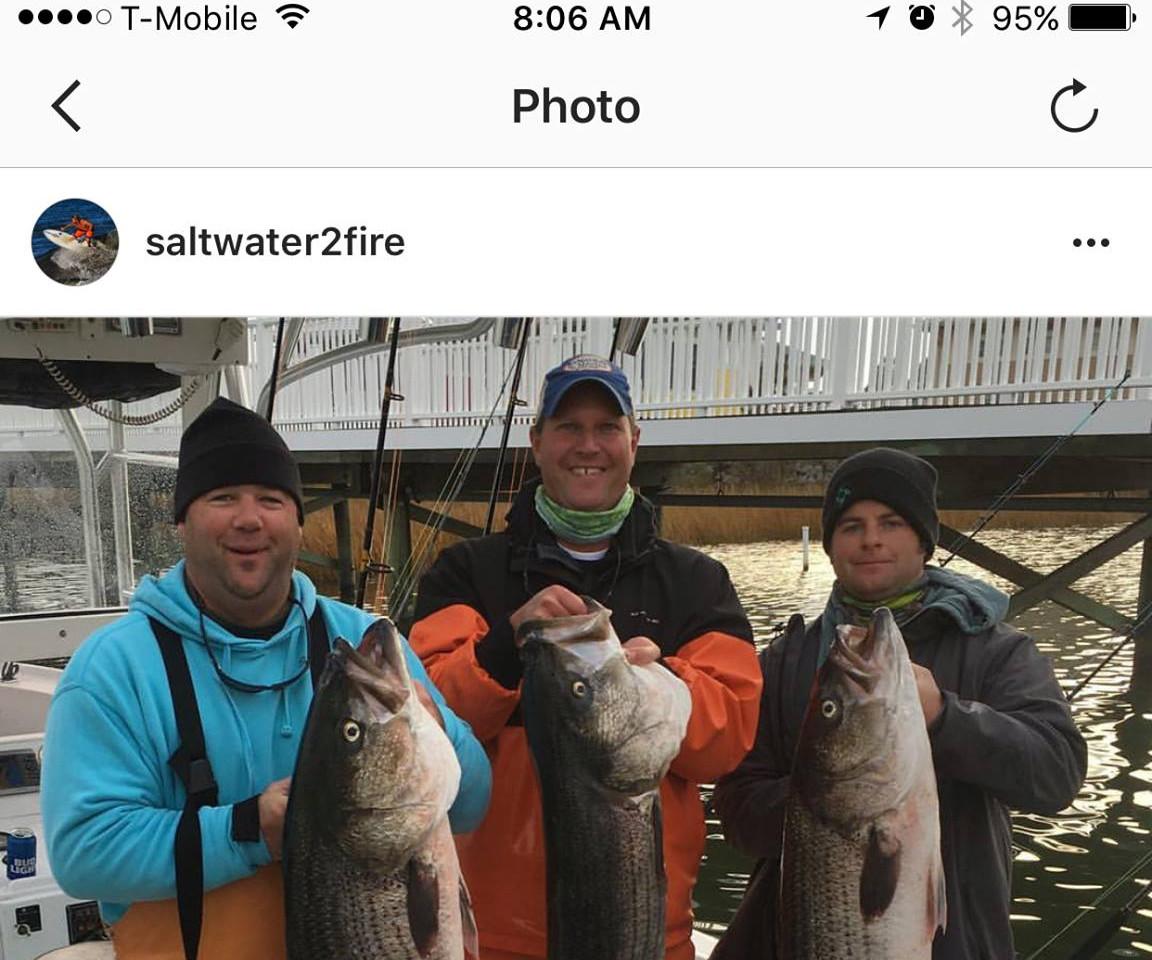 Mid-Atlantic Rockfish Shootout
