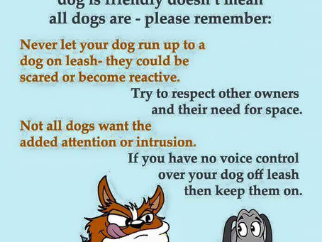 Tip - Not all dogs are friendly!