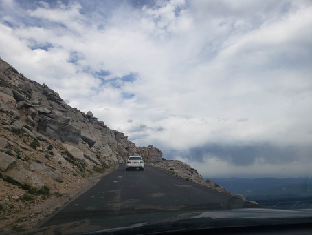 Adventure with wild life on Mt. Evans