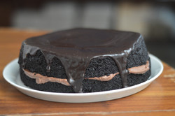 Mud cake2
