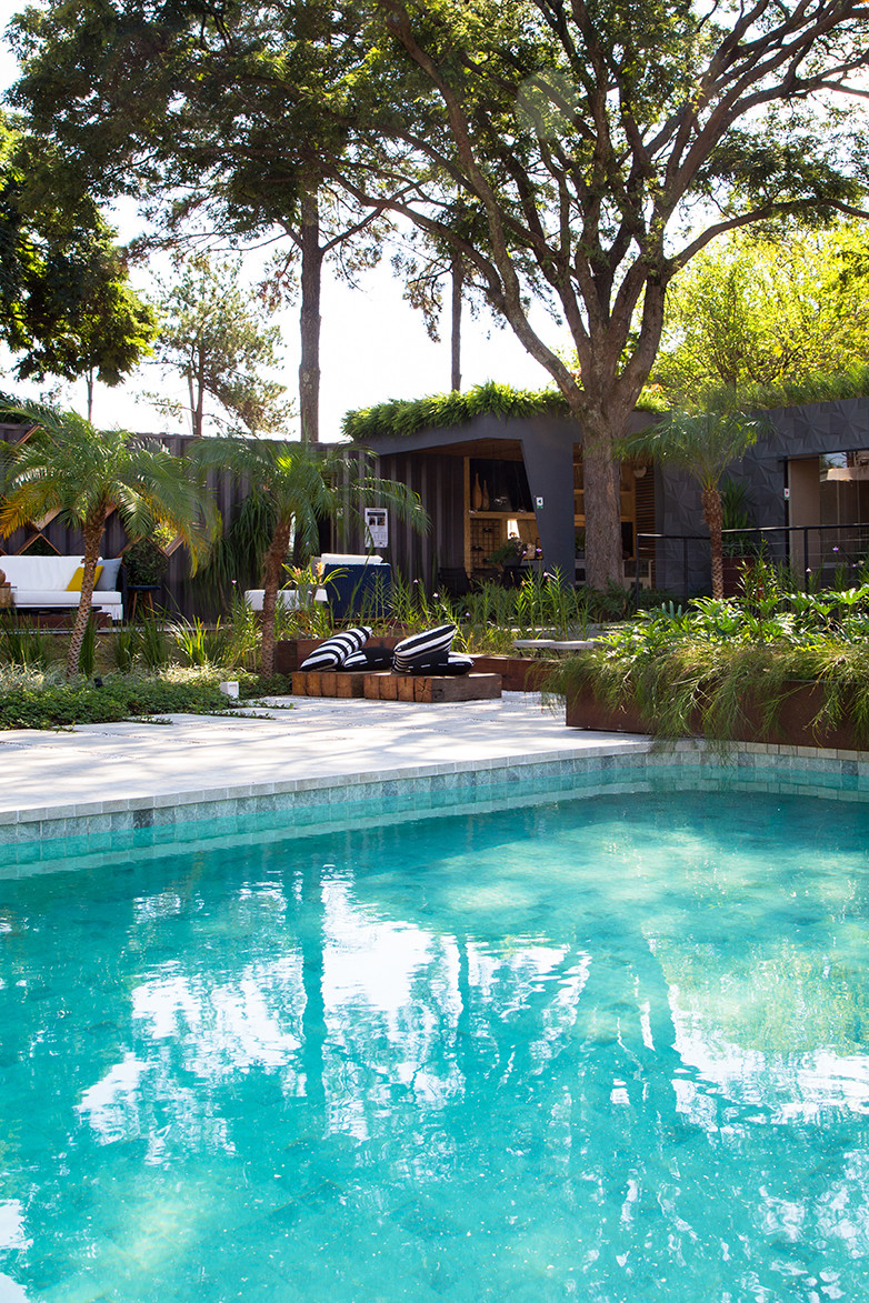 projeto piscina campinas