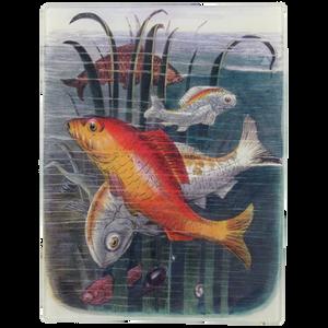 DT-Goldfish_large