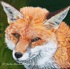"""Fluffy fox"""