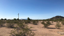 SOLD! - Amazing 2.12 Acres in Casa Grande for Sale! 502-28-032