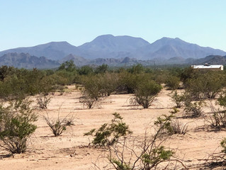 PENDING - 2.5 Acres with Mountain Views in Maricopa - 54802 W Adele Road