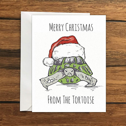 Merry Christmas from the Tortoise Greeting Card A6