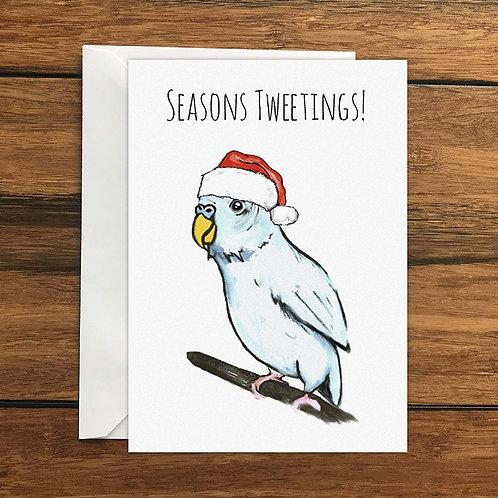 Seasons Tweetings! Budgie Greeting Card A6