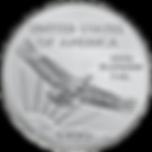 platinum eagle 2020.png