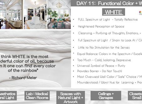 11 DAYS OF FUNCTIONAL COLOR