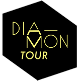 logo diamontour agence de booking pictogramme visuel diamant diamond tour