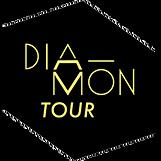 logo diamontour agence de booking pictogramme visuel diamant diamond tour