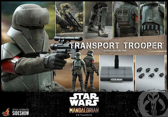 Hot Toys 1:6 Transport Trooper