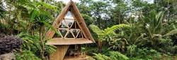 Exotic Eco Homes