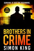 BROTHERS IN CRIME EBOOK COVER.jpg