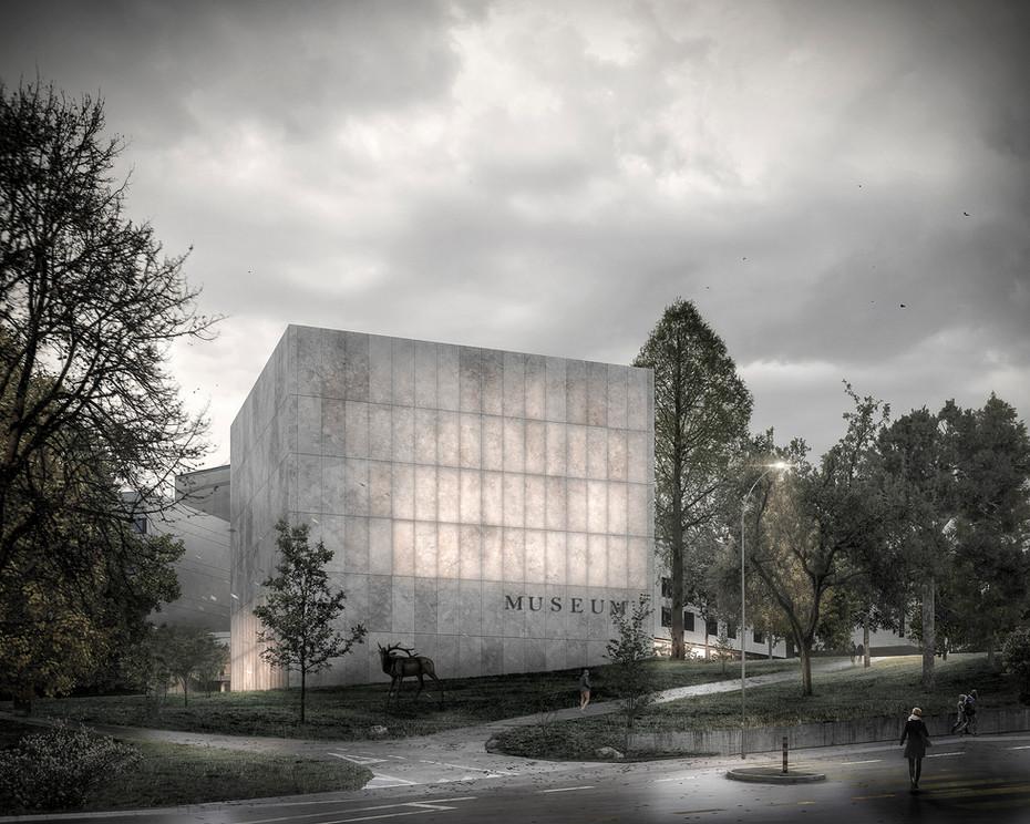 Museum d'histoire naturelle, Genève 1er prix  -  2017