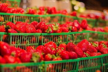 Local Ontario Strawberries