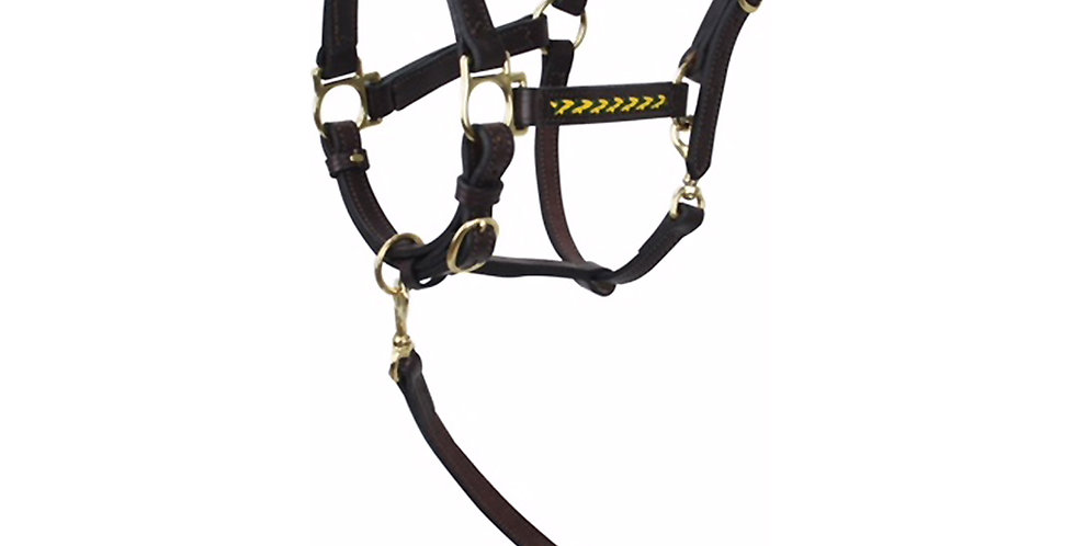 Braided Show Halter and Lead