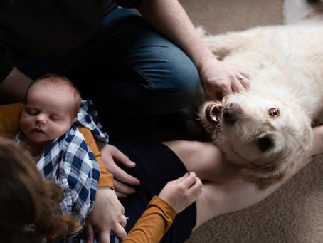 Baby Beaudon | Lifestyle Newborn Photography