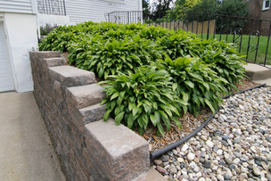 Retaining Wall & Landscaping