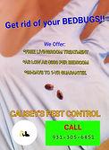 bedbug meme add CPC.jpg