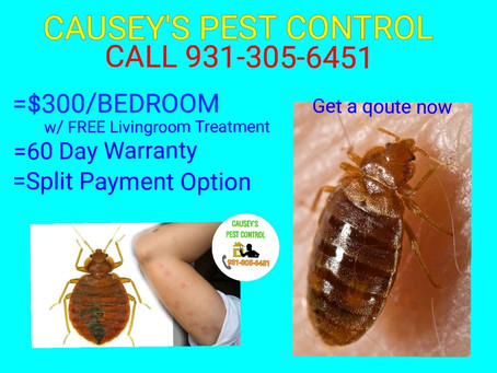 Causey's Pest Control: Your Trusted Pest Control Neighbor