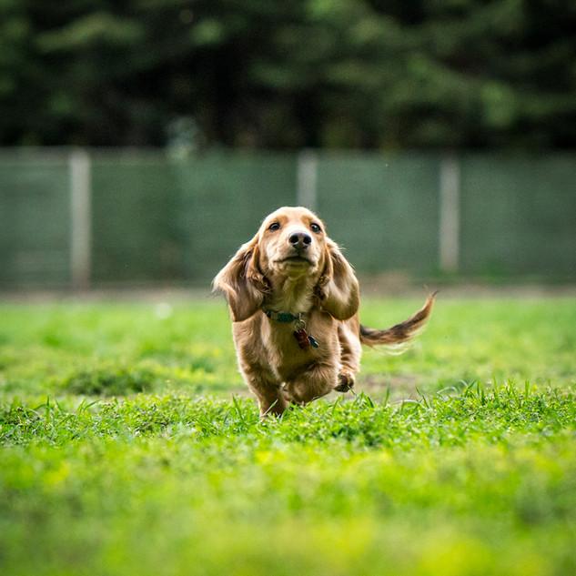 Running towards you