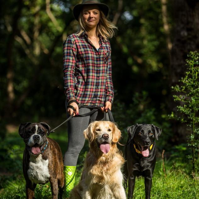 Dog collars photoshoot
