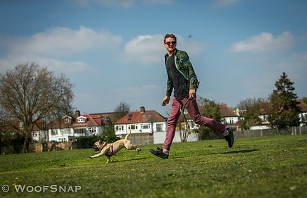 Dog walker running in the park with a French Bulldog on a sunny summer day