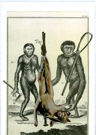 Monkey Business (Monnaie de singe)