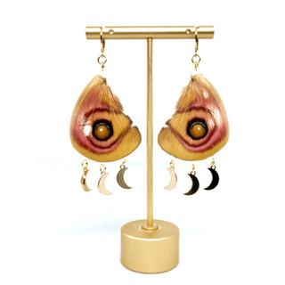 Silk Moth Earrings