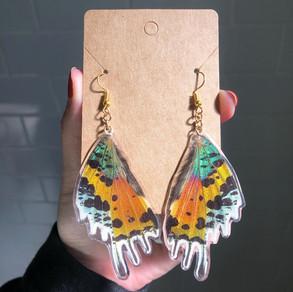 Sunset Moth Earrings