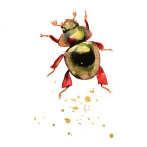 'Beetle' WaterColor 2018