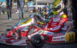 Birel ART India-Our Racing Programs.jpg