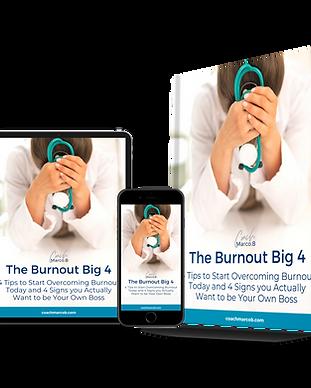 Burnout Big 4 Graphic.png