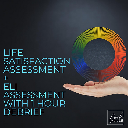 Life Satisfaction Assessment + ELI Assessment and 1-Hour Debrief Session