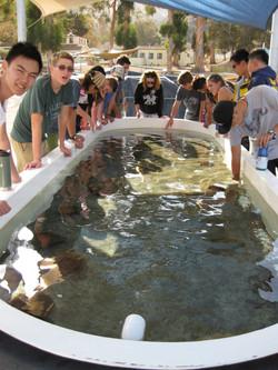 Upper School Catalina Trip