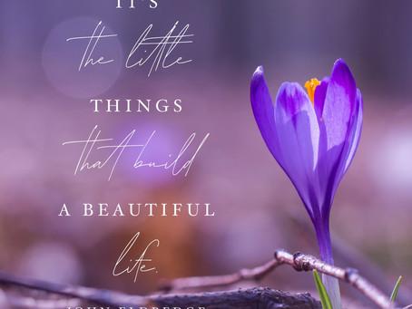 Building a Beautiful Life