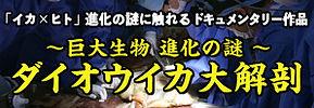 top_daiohika.jpg