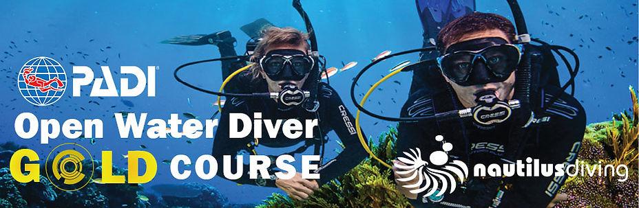 PADI Open Water Diver Gold.jpg
