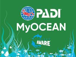 MyOcean Profilinizi Kullanıyor musunuz?